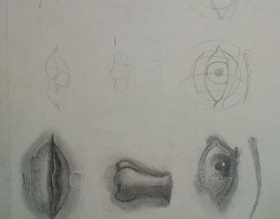 Exercício olho nariz e boca