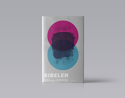 Alternative covers of the Bible with different styles.