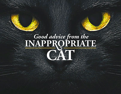 """Hopcat - """"The Inappropriate Cat"""""""