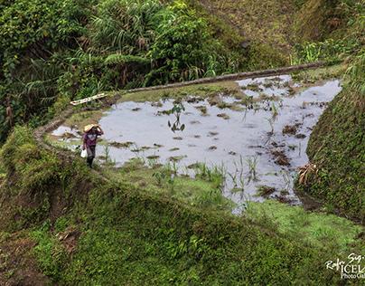 Documenting Philippines 03
