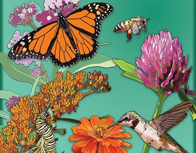 Pollinator Awareness Sign