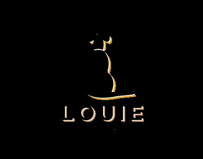 Toronto Logo Design Project