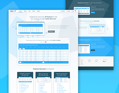 ZingGrid Features Landing Page