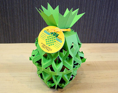 Pineapple Pastry Package