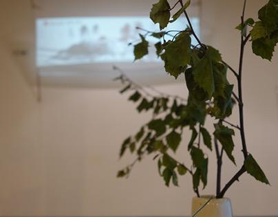 Mai_Interactive Eco-Art Installation