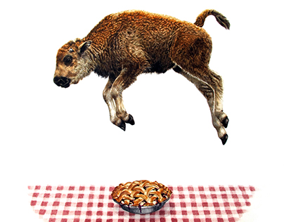 Fourth of July/Baby Bison Jumps Over Pie