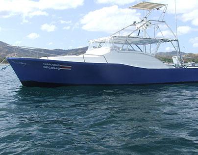 Sport Fishing Blue Marlin