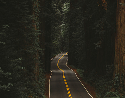 Roadtripping Oregon
