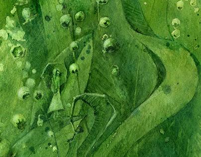 illustration / watercolor