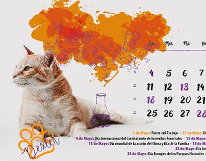 Calendario Sobremesa DHA 2020