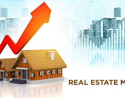 Insights Of Real Estate Market