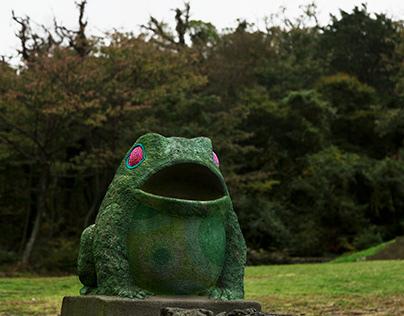 Rana verde de Jeju