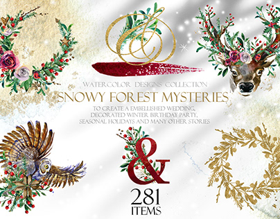 Snowy forest Mysteries
