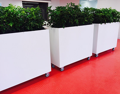 Custom Designed Planters