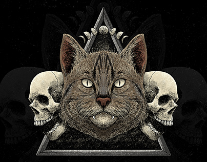 Triangle Cat (artwork for sale)