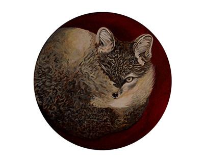 Gatos - Chats - Māo - Cats - Neko