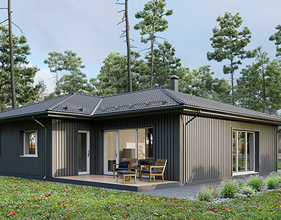 Finnish Houses Visualization Series. House №13.