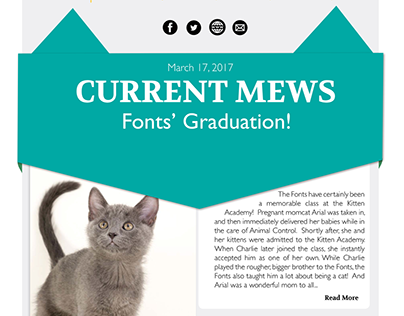 Kitten Academy E-mail Newsletters and Ads