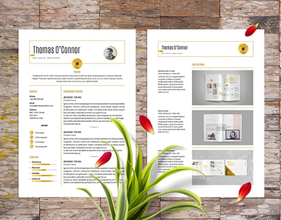 FREE Modern Resume Template for Adobe InDesign