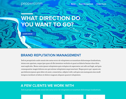 Peppercomm Hedgefund Website Iterations