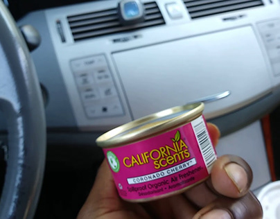 Car air freshener rating of the best