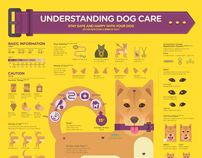 2019_09 Understanding Dog Care