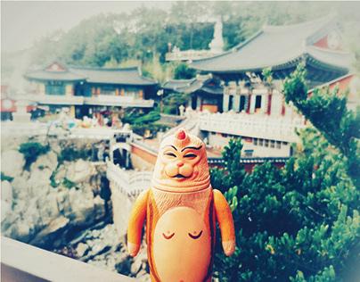Monk SEALMON