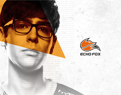 We are Echo Fox