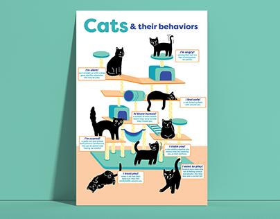 Cats & their behaviors