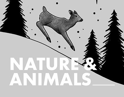 Theme Project for SK Telecom - NatureAnimals