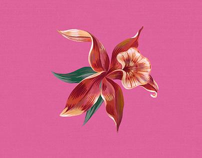 Verão 2020 Riachuelo | Estampa Floral