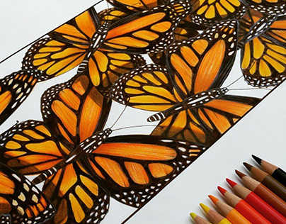 Butterfly Surface Pattern Design