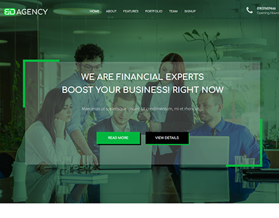 Agency Website Theme for Wordpress