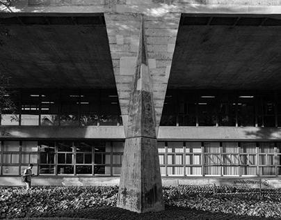 Iconic Columns. Contemporary Architecture in Brazil