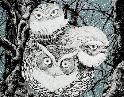 monster : owl brother
