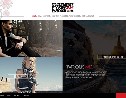 Website Design (DAMN I Love Indonesia)