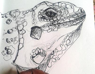 Iguana Sketch (Work In Progress video).