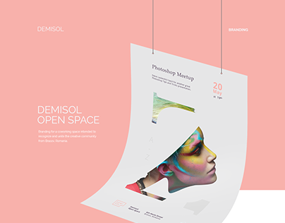 Demisol - Branding