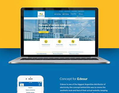 EDESUR Landing Page Concept