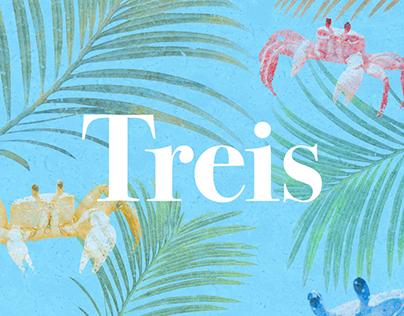 Grupo Treis