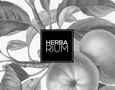 Herbarium - Zielnik