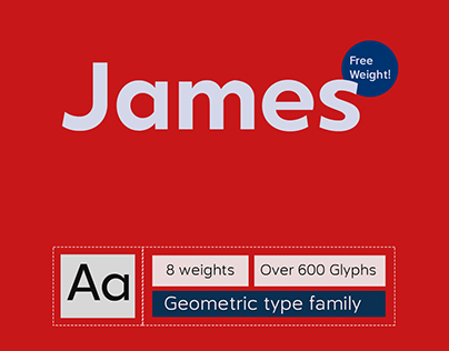 NS-James (Font Family)