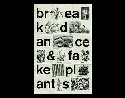 breakdance & fake plants – poster