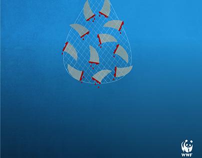 WWF: Shark Finning