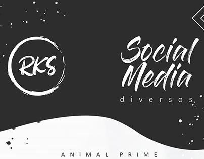 SOCIAL MEDIA - DIVERSOS