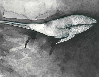 Il posto delle balene water colour and acrylic on paper