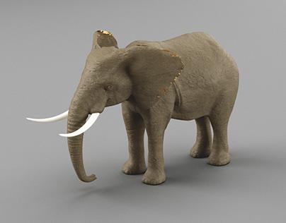 Elephant 3D study