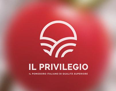 IL PRIVILEGIO | BRAND IDENTITY