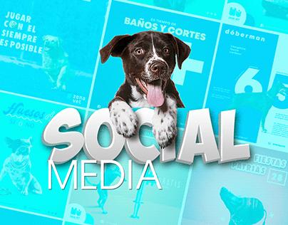 SOCIAL MEDIA VETERINARIA ZONA VET