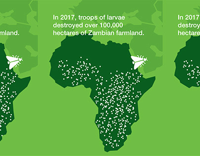Armyworms Infographic